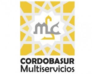 portfolio-cordobasur-multiservicios